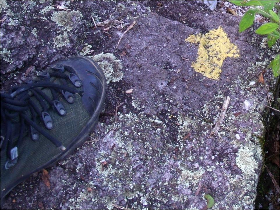 Sinalização direcional pintada em um local que não é ideal, pois ao ser pisada por caminhantes vai se apagar logo (Parque Nacional da Tijuca).