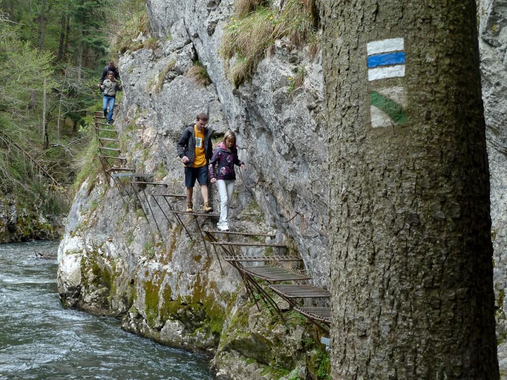 Sistema de duas trilhas sinalizadas com dois ícones diferentes (Parque Nacional Paraíso Eslovaco, Eslováquia)