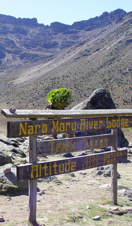 Placa de localização com informação de altitude (Parque Nacional do Monte Quênia, Quênia)