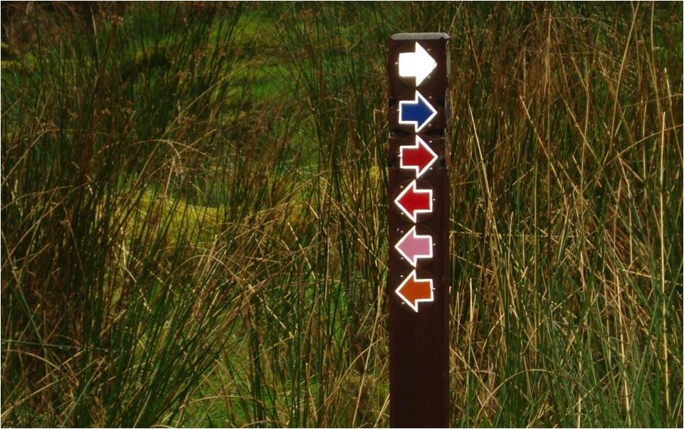O uso de cores diferentes para trilhas que estão em um mesmo sistema de caminhos é comum nos Parques Nacionais do mundo inteiro. Este exemplo (de várias trilhas correndo sobre o mesmo leito) é do Parque Nacional Krka, na Croácia.