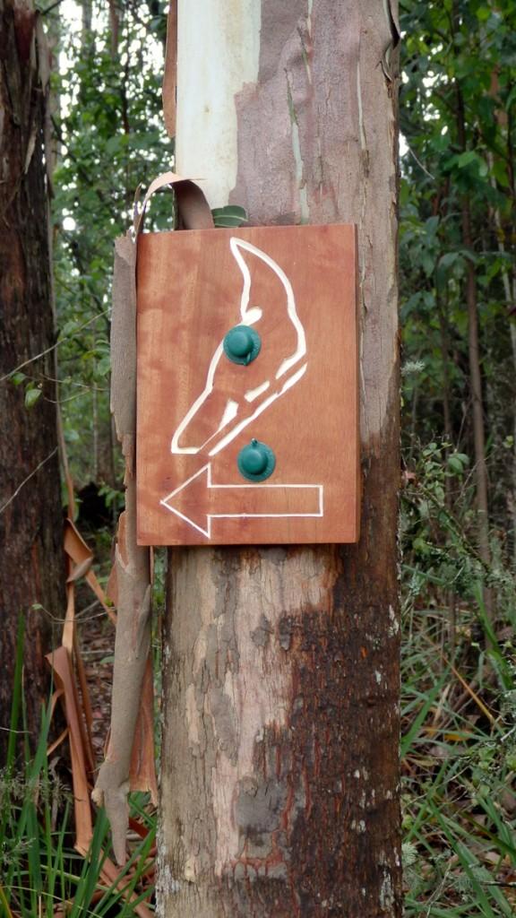 Tabuleta afixada corretamente na trilha de longo curso Turaco (Parque Nacional Nyanga, Zimbábue)