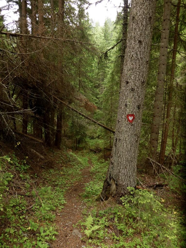 Sinalização criativa: a Trilha do Amor (Parque Nacional Kopaonik, na Sérvia)
