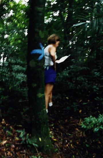Sinalização feita por usuários em árvore no Parque Nacional da Tijuca. Notar que nem a sinalização nem o mapa artesanal ajudaram a moça a encontrar o caminho certo.
