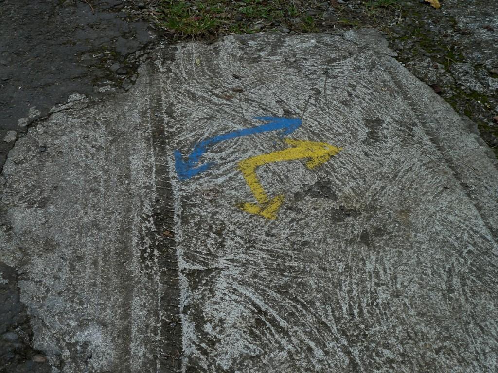 Os dois traços azul e amarelo usados na Trilha Nacional Waitakabuli não foram suficientes para mostrar a direção correta (Reserva Florestal Central, Dominica)