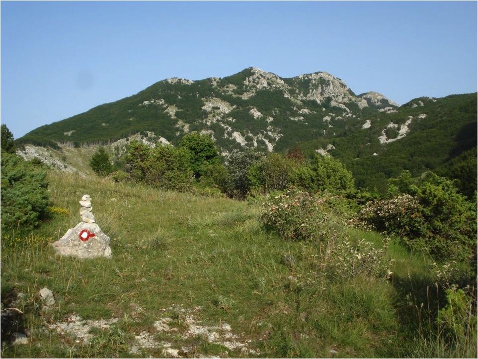 Também o uso de totens de pedra não dispensa a sinalização pintada (Parque Nacional de Lovcen, Montenegro).