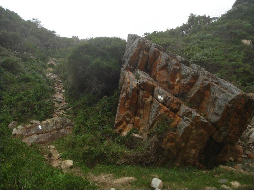 Notar a pegada confirmatória, na trilha a ser seguida (Travessia de Harkerville, Parque Nacional da Rota Jardim, África do Sul).