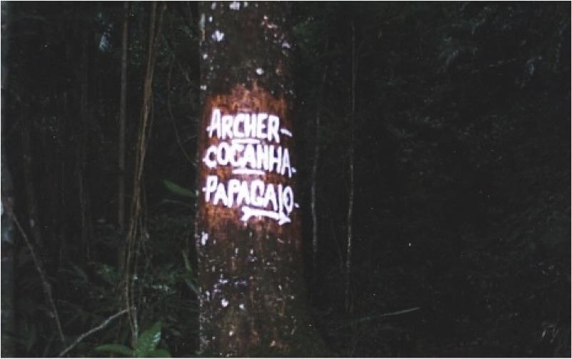 Sinalização feita por usuários antes da adoção de um programa institucional de sinalização no Parque Nacional da Tijuca, em 1999.